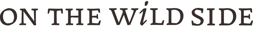 logo OTWS