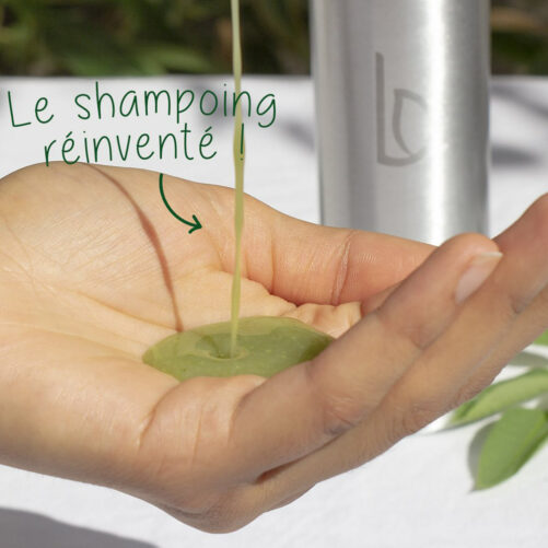 Shampoing-Soin Purifiant - cheveux normaux à tendance grasse